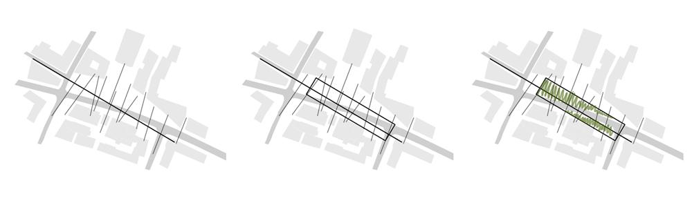 schemi-morfologici